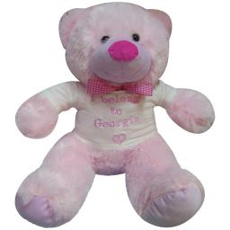 Large 35cm bear with embroidered t shirt